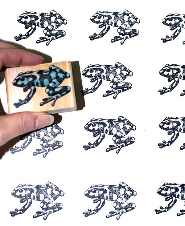 Poison Dart Frog Stamping