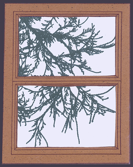 Branch Window